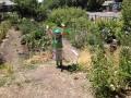 wasatch-gardens-03